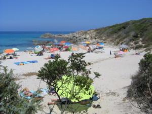 Bodri Beach nudist area