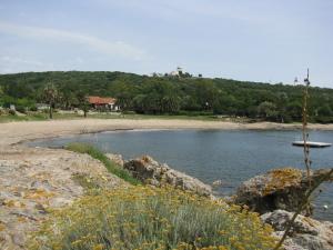 La chiappa beach